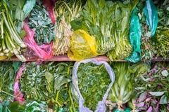 Erbe organiche fresche su esposizione Fotografia Stock