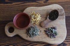 Erbe per tè sul bordo di legno Fotografia Stock