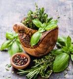 Erbe piccanti fresche in mortaio Immagini Stock