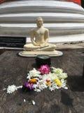 Erbjudande tabell för Buddhablomma Arkivfoto