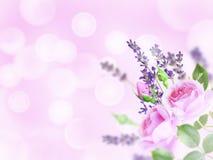 Erblassen Sie - rosa Rosen und Lavendel in der Ecke des unscharfen backgr stockfotos
