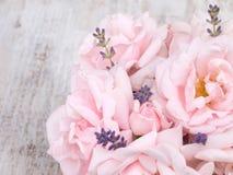 Erblassen Sie - rosa Rosen und Lavendelblumenstrauß auf dem weißen Hintergrund Stockfotos