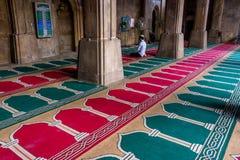 Erbstadt Ahmedabad - Indien Lizenzfreie Stockfotografie