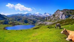Ercina sjö på Picos de Europa i Asturias Spanien royaltyfri foto