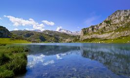 Ercina sjö på Picos de Europa i Asturias Spanien arkivfoto