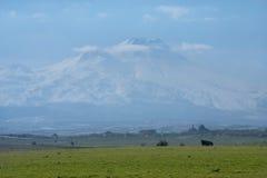 Erciyes góra obraz stock