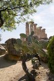 Ercole świątynia Agrigento, Sicily - Zdjęcie Royalty Free