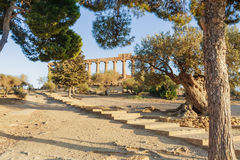 Ercole świątynia w dolinie świątynie Agrigento sicily Zdjęcie Royalty Free