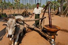 Erdölgewinnung auf Myanmar Stockbild