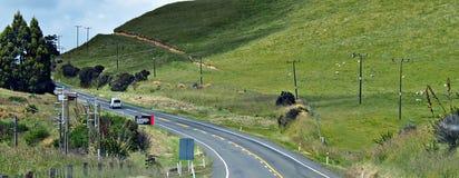 Erdbeben-Neuseeland-Sprungs-Hügel
