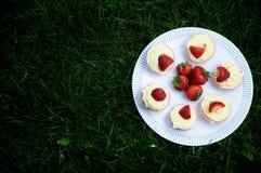 Erdbeer-und Vanille-kleine Kuchen auf Gras Lizenzfreie Stockfotografie