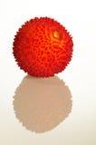 Erdbeerbaumfrucht und -reflexion Lizenzfreie Stockfotos