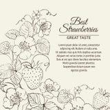Erdbeerbrunch lizenzfreie abbildung