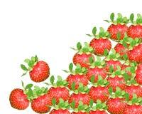 Erdbeere Vektor Abbildung