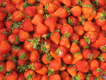 Erdbeere Lizenzfreies Stockbild