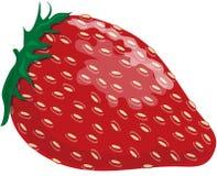 Erdbeere stock abbildung