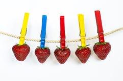 Erdbeere auf dem Seil Lizenzfreies Stockfoto