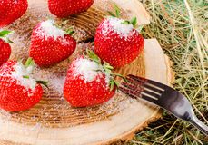 Erdbeere auf dem Stumpf Lizenzfreies Stockfoto