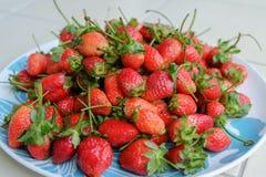 Erdbeere auf dem Teller Lizenzfreie Stockfotografie