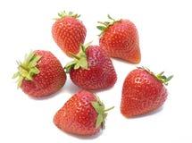 Erdbeere auf einem weißen Hintergrund Stockfotografie
