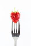 Erdbeere auf einer Gabel gegen Stockfotografie