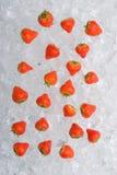 Erdbeere auf Eis Stockbild