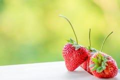 Erdbeere auf Holz- und Unschärfehintergrund Stockfotografie