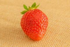 Erdbeere auf Textilhintergrund stockfoto
