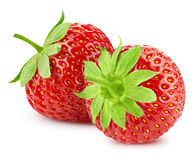 Erdbeere auf Weiß lizenzfreies stockfoto