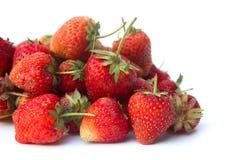 Erdbeere auf weißem blackground Stockbilder