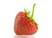 Erdbeere auf weißem Hintergrund Stockbilder