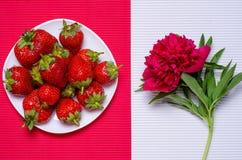 Erdbeere blüht Pfingstrosen lizenzfreies stockbild