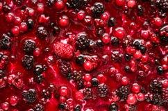 Erdbeere, Brombeere und Himbeere stockfotografie
