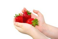 Erdbeere in den Händen Lizenzfreies Stockbild