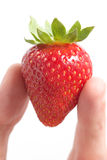 Erdbeere in der Hand Stockfotografie