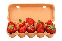 Erdbeere in der offenen Fördermaschine des braunen Eies über Weiß Stockfotos