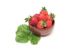 Erdbeere in der Schüssel Stockfotografie