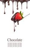 Erdbeere in der Schokolade Lizenzfreie Stockfotos