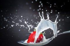 Erdbeere, die auf einem Löffel von Milch, schwarzer Hintergrund spritzt Lizenzfreie Stockbilder