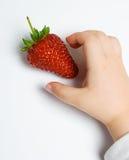 Erdbeere, die von einem Kind genommen wird Lizenzfreie Stockbilder