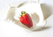 Erdbeere in einer Sahne stockfotografie