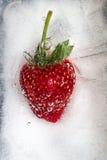 Erdbeere eingefroren im Eis lizenzfreie stockbilder