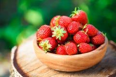 Erdbeere Erdbeeren Organische Beeren Stockfotografie