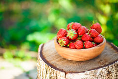 Erdbeere Erdbeeren Organische Beeren Lizenzfreie Stockfotos