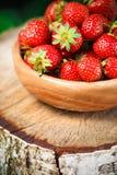Erdbeere Erdbeeren Organische Beeren Stockfoto