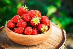 Erdbeere Erdbeeren Organische Beeren Lizenzfreies Stockfoto