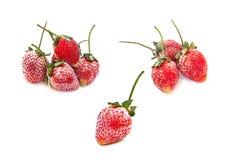 Erdbeere gefrorene Beeren auf weißem Hintergrund Stockfotografie