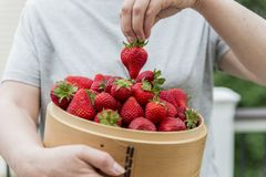 Erdbeere im hölzernen Korb Stockbilder