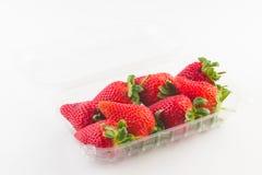 Erdbeere im Plastikkasten Verpackung für Verkauf Stockfotografie