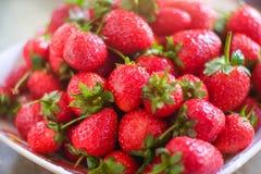 Erdbeere im Teller Lizenzfreie Stockbilder